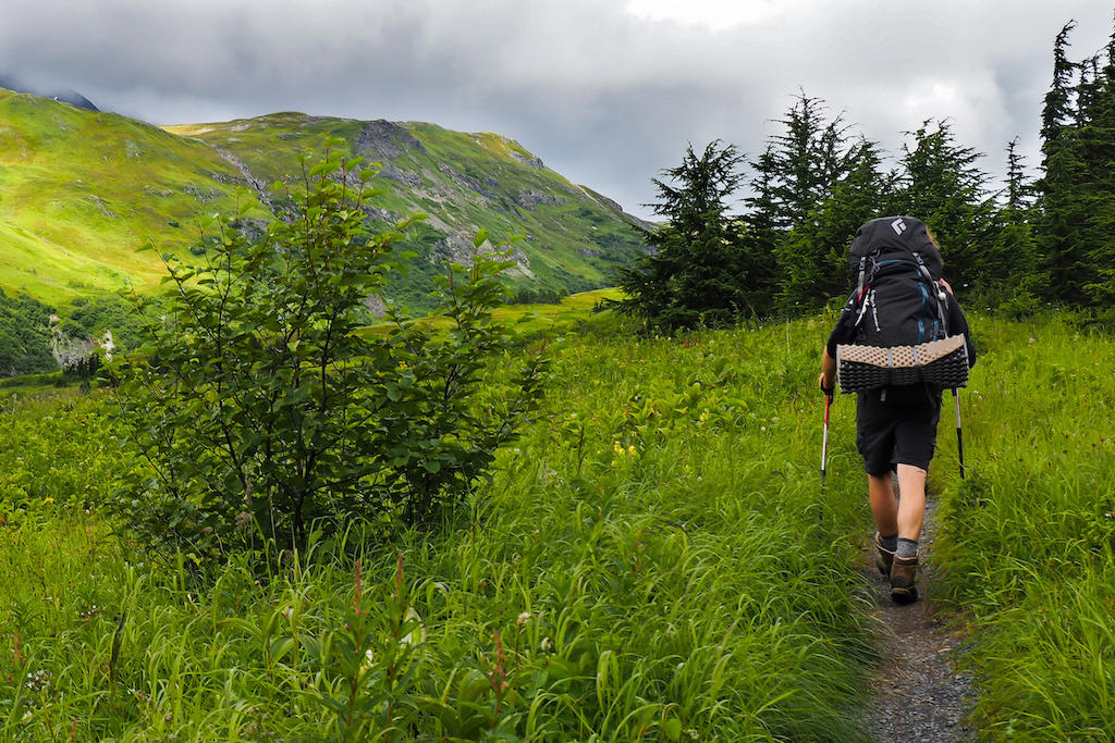 A hiker walking up an Alaskan trail with a backpack full of gear