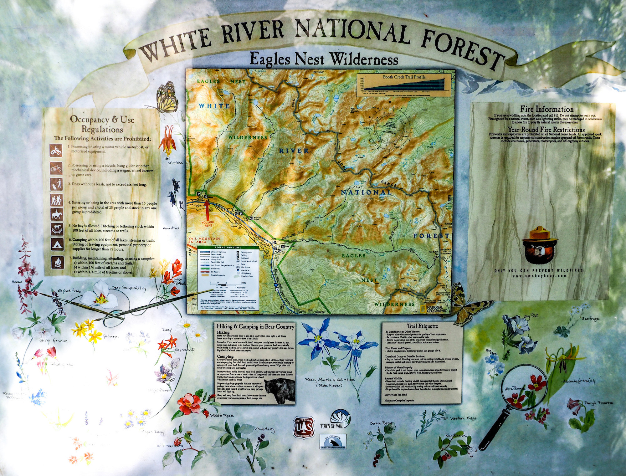 """A trailhead sign reading """"WHITE RIVER NATIONAL FOREST"""""""