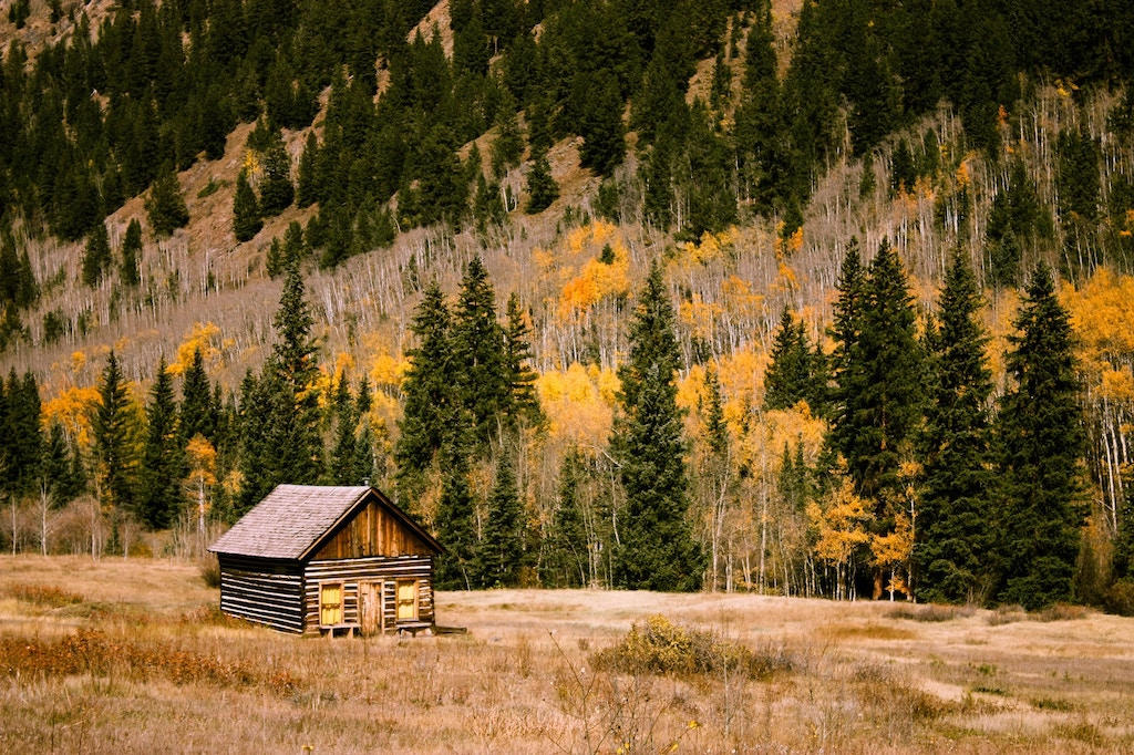 A barn with a backdrop of trees in the fall with their leaves changing colors
