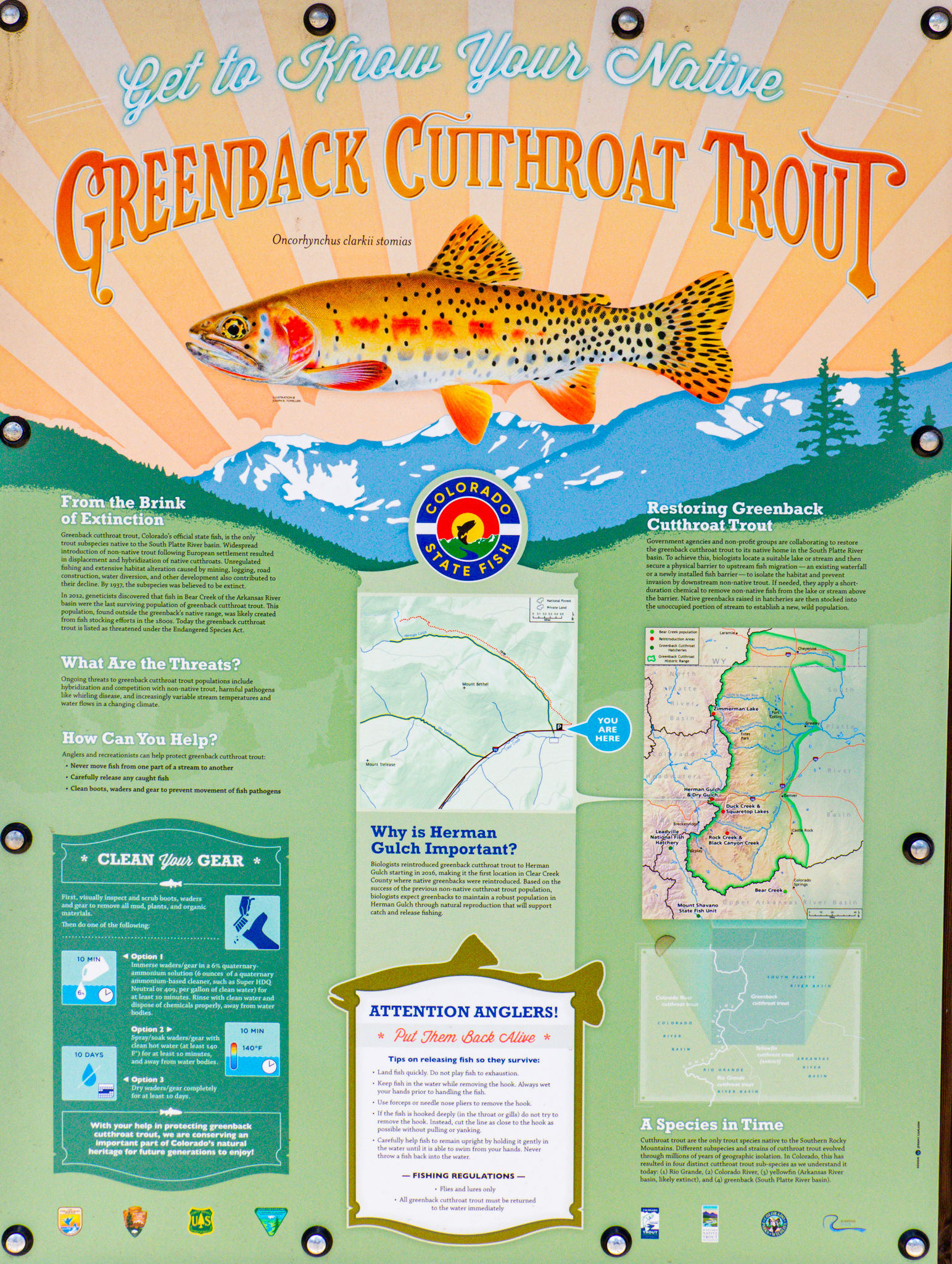 "A sign with fishing rules and regulations titled ""Get to Know Your Native GREENBACK CUTTHROAT TROUT"""