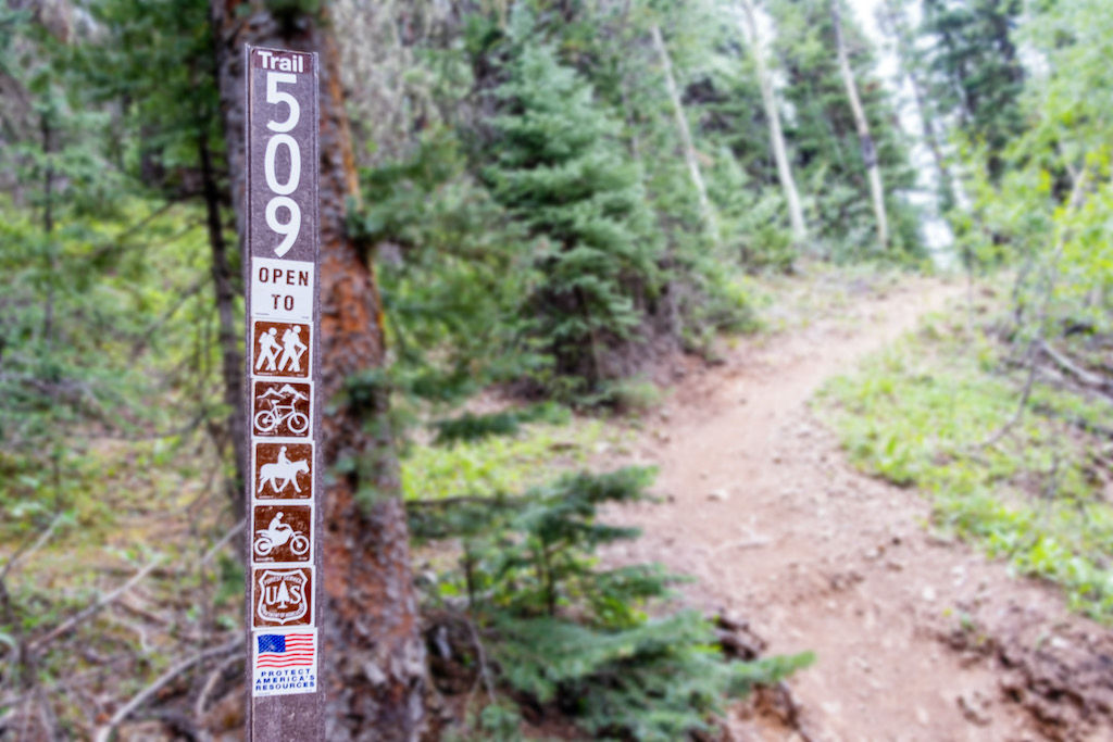 "Trail marker at the Columbine Lake Trailhead reading ""Trail 509"""